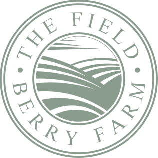 THE FIELD BERRY FARM LOGO